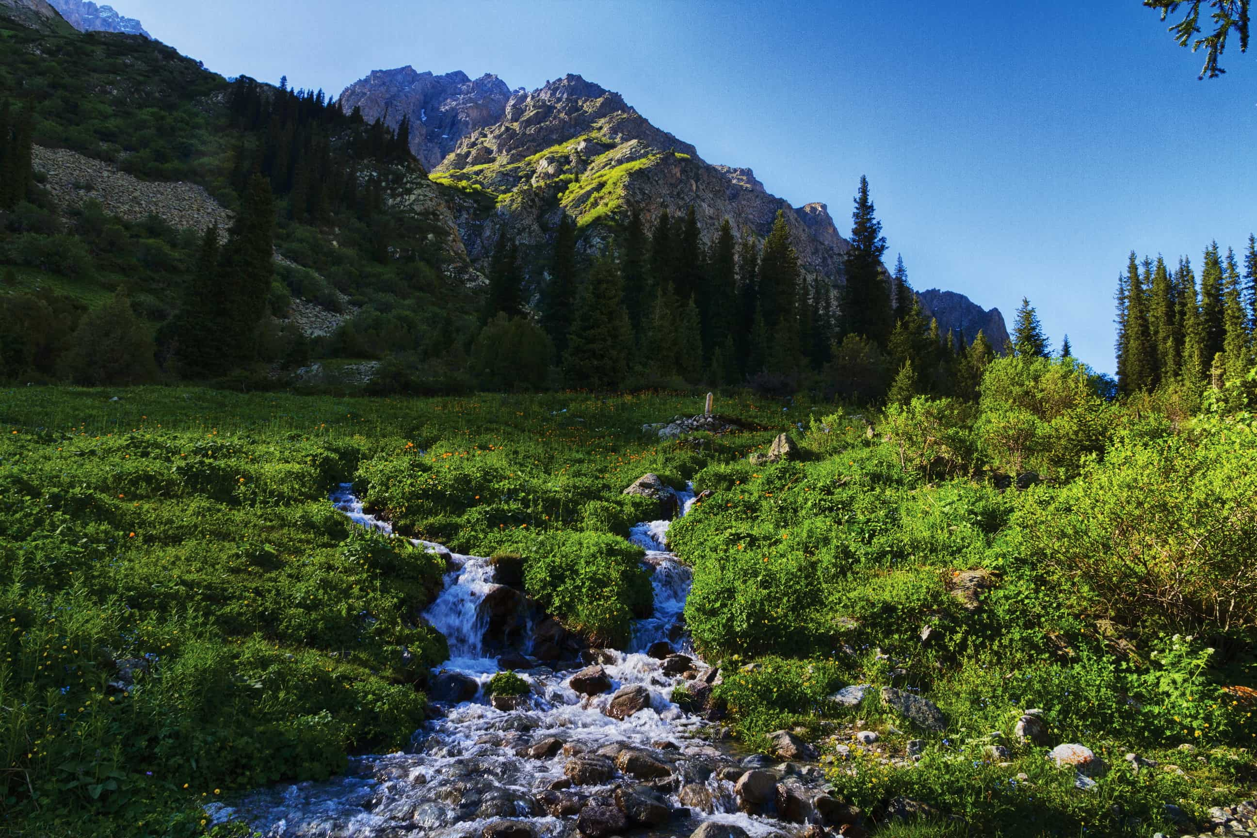Mountains_Scenery_Kyrgyzstan_Tian_Shan_Stream_Grass_Nature_2592x1728